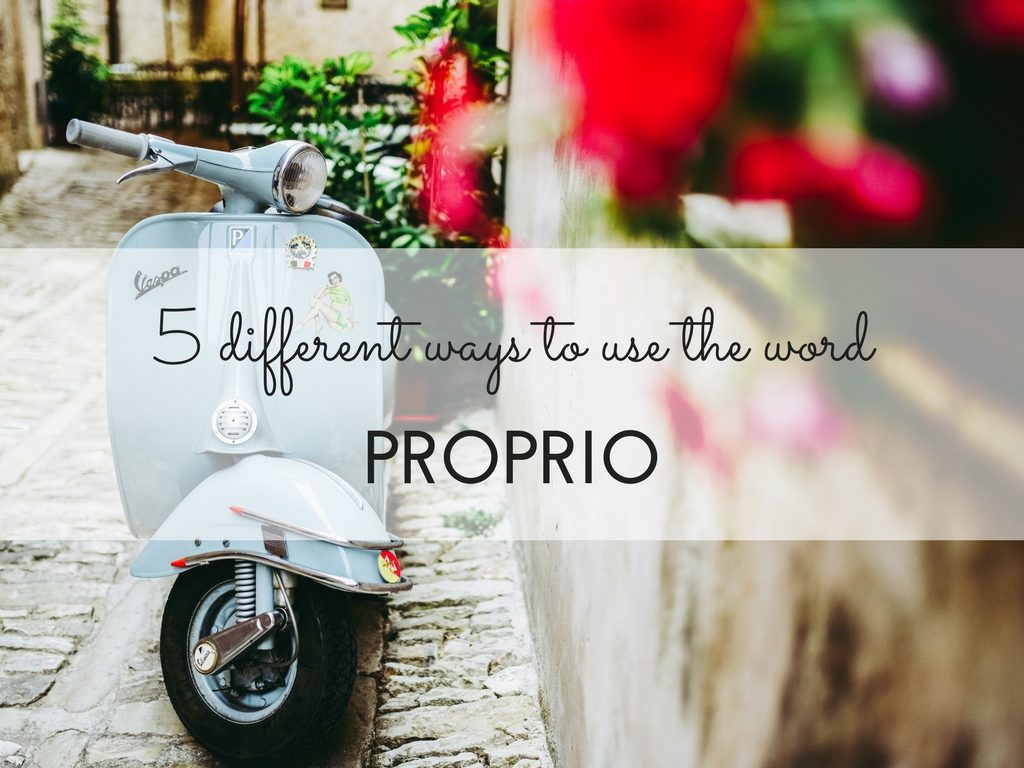 5 ways to use the Italian word PROPRIO